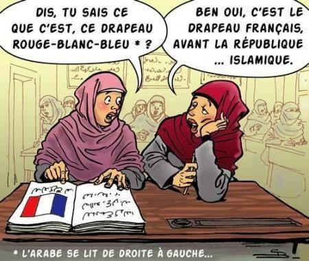 """Résultat de recherche d'images pour """"photo islamisation de la france"""""""